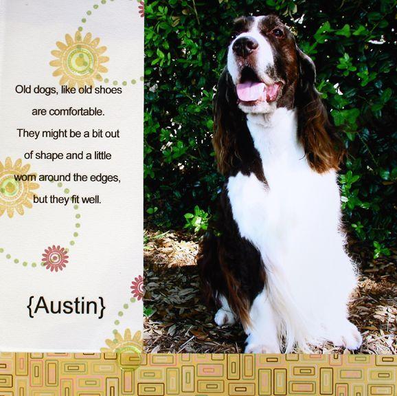 Austin LO 7