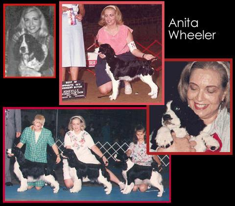Anita_collage